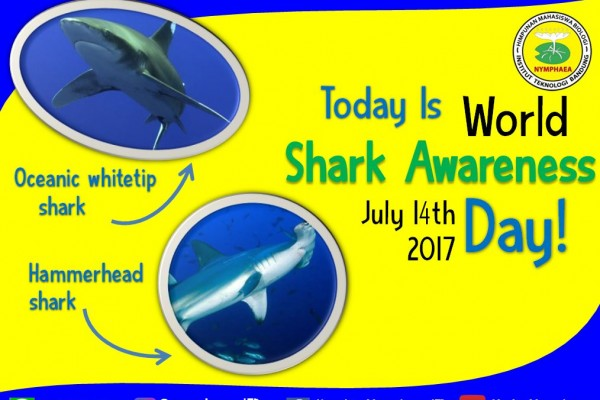International Shark Awareness day 2017 (Source: arkive.com)