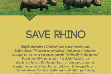 rhino_day